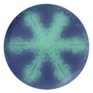 Placa de la escama 9 de la nieve platos de comidas