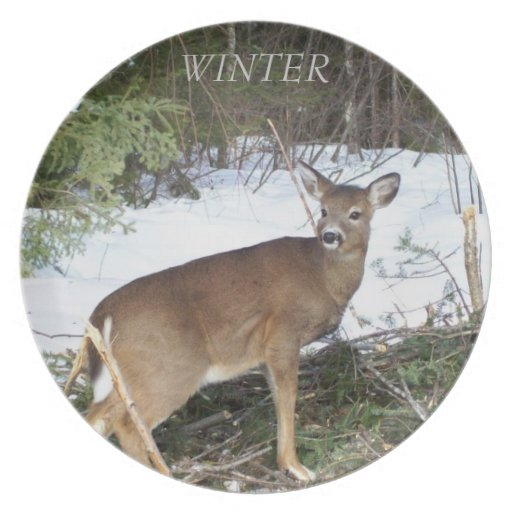 Placa de la estación del invierno de los ciervos plato