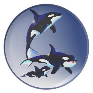 Placa de la familia de la orca platos de comidas