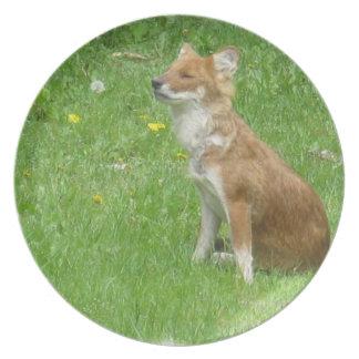 Placa de la foto del Fox Platos Para Fiestas