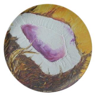 Placa de la fruta tropical del coco platos para fiestas