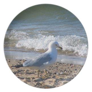 Placa de la gaviota de la playa plato