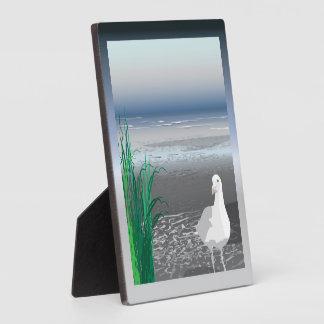 Placa de la gaviota del banco de niebla