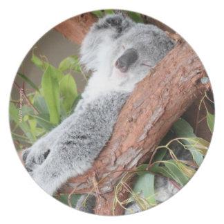 Placa de la koala platos de comidas