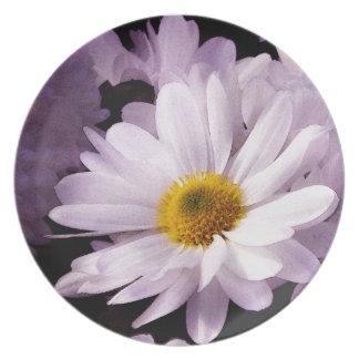 Placa de la margarita blanca platos para fiestas
