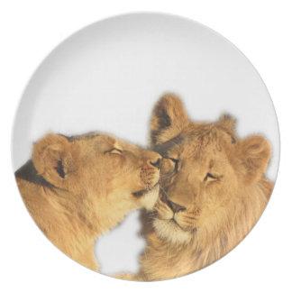 Placa de la melamina de los pares del león platos