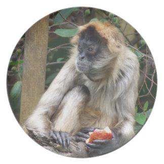 Placa de la melamina del mono de araña plato de cena
