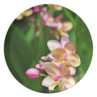 Placa de la melamina del Orchidaceae Platos De Comidas