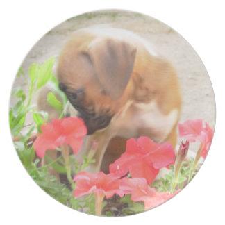Placa de la melamina del perrito del boxeador platos