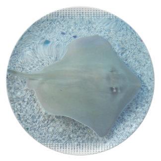 Placa de la pastinaca del agua dulce platos para fiestas