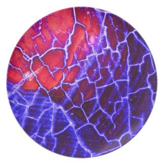 Placa de la piel del modelo de la ágata de la piel platos de comidas