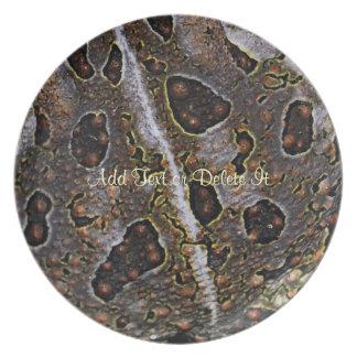 Placa de la piel del sapo plato para fiesta
