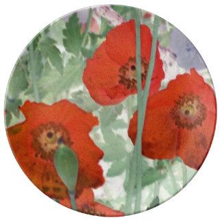 placa de la porcelana de las amapolas