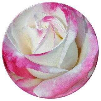 Placa de la porcelana del rosa rosado y blanco plato de cerámica