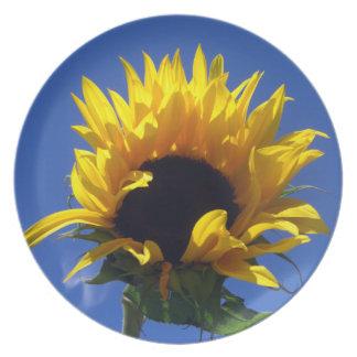 Placa de la salida del sol del girasol plato