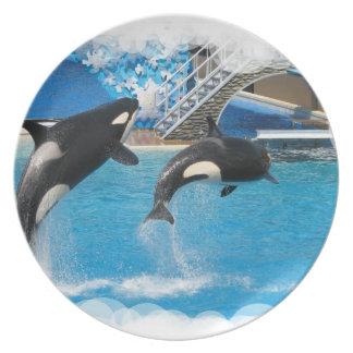 Placa de las ballenas de la orca plato