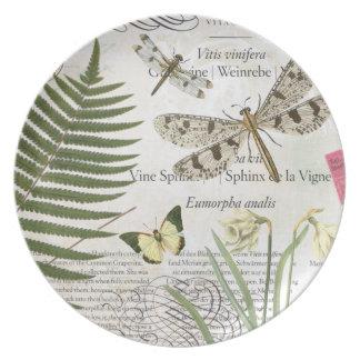 Placa de las libélulas del vintage platos de comidas