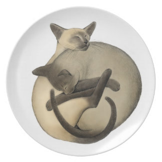 Placa de los gatos siameses el dormir de Yin Yang Platos