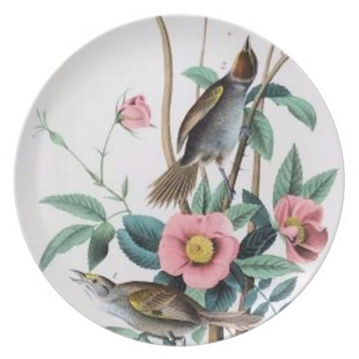 Placa de los pájaros #10 platos para fiestas