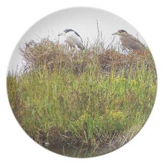 Placa de los pájaros de la garza plato de comida