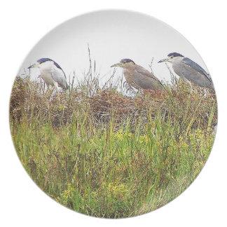 Placa de los pájaros de la garza platos para fiestas