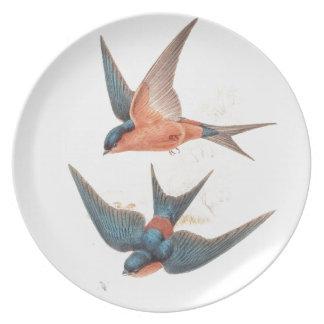 Placa de los pájaros del trago de Gould Platos Para Fiestas