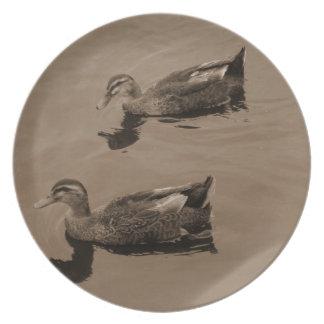 Placa de los patos plato