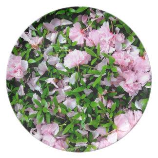 placa de los pétalos de Sakura Platos