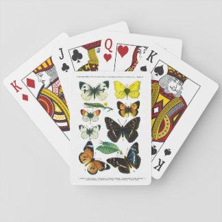 Placa de mariposas europea II Cartas De Juego