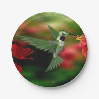 Placa de papel del colibrí platos de papel