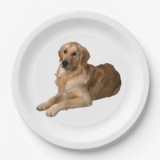 Placa de papel del golden retriever platos de papel