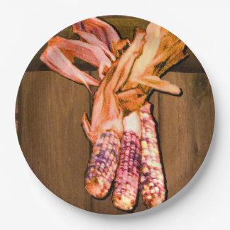 Placa de papel del maíz indio plato de papel 22,86 cm