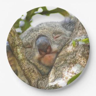 Placa de papel del oso de koala plato de papel de 9 pulgadas