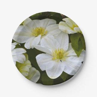 Placa de papel del placer blanco plato de papel de 7 pulgadas