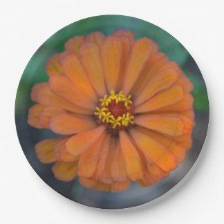 Placa de papel del Zinnia del tono naranja Platos De Papel