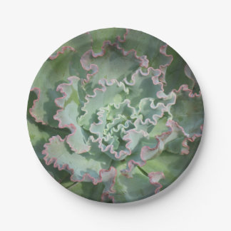 Placa de papel suculenta platos de papel