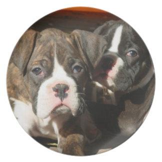 Placa decorativa de los perritos del boxeador platos de comidas