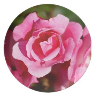 Placa decorativa de los rosas rosados plato para fiesta