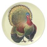 Placa decorativa de Turquía Melanine de la acción  Platos De Comidas