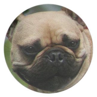 Placa decorativa del dogo francés plato