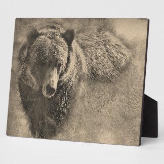 Placa decorativa del ejemplo del oso grizzly