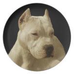 Placa decorativa del perro blanco de Pitbull Plato Para Fiesta