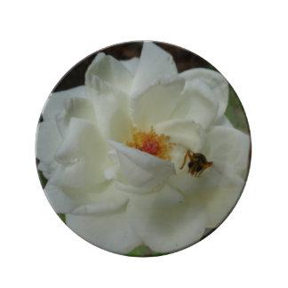 Placa decorativa del rosa blanco platos de cerámica