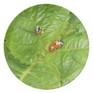 Placa decorativa - mariquitas plato
