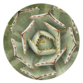 Placa del agavo platos de comidas