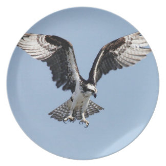 placa del águila del vuelo plato para fiesta