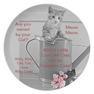 Placa del amante del gato plato