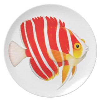 Placa del Angelfish de la hierbabuena del filón Plato