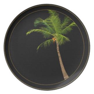 Placa del árbol de coco plato para fiesta