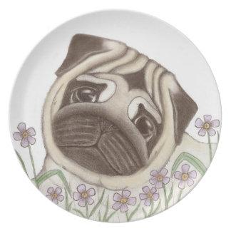 Placa del barro amasado de la primavera plato para fiesta